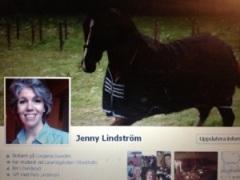 Min egen Facebook