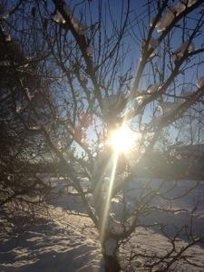Solstråle