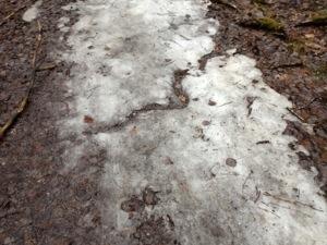En liten vårflod i isflaket :)