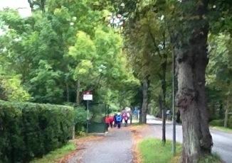 En grupp stavgångspensionärer blockerade gångvägen.