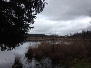 Inte lika vackert väder som förra måndagen och inte heller lika slående utsikt som över Ulvsundasjön
